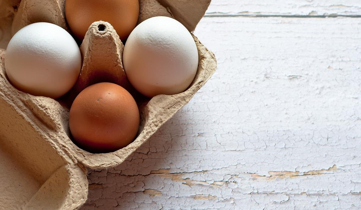 jajka - źródło choliny