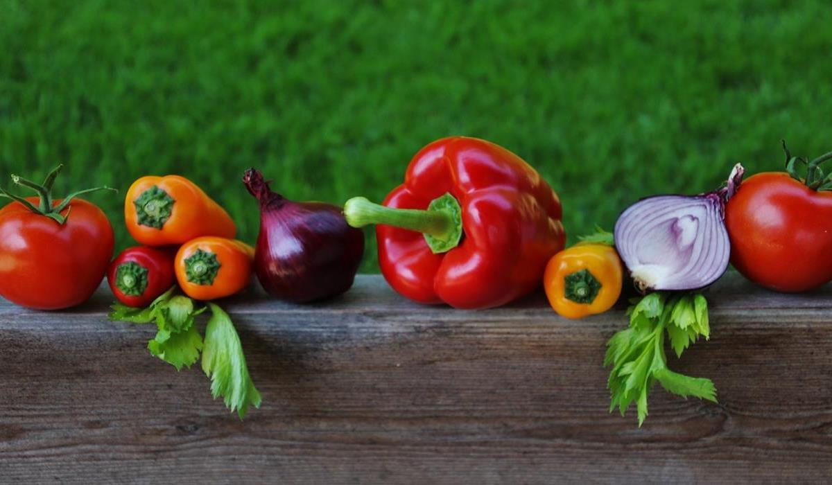 warzywa z ekologicznej uprawy